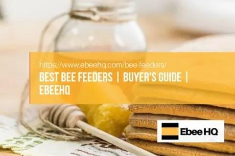 Best Bee Feeders & Bee Hive Feeders