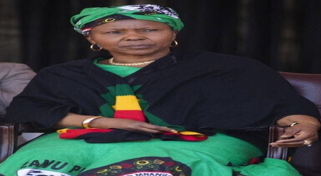 Zimbabwean-Minister-who-celebrated-COVID-19-as-Gods-punishment-on-the-West-now-suffering-the-virus