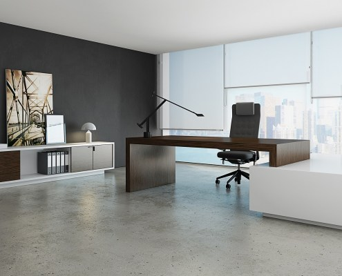 Bureau de direction grand espace design