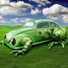 Save Money on a Used Car by Going Green