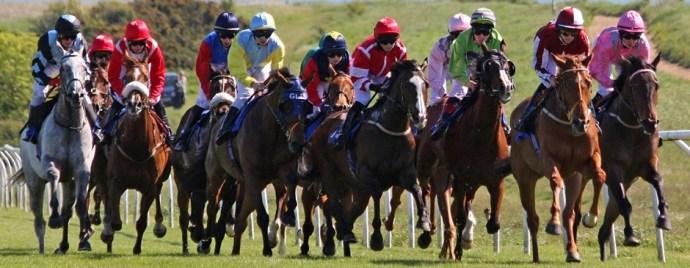 racing-horses