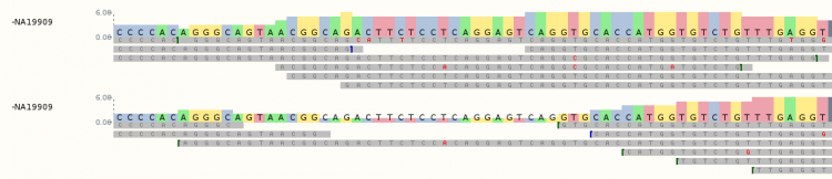 A CRAM file aligned to a reference genomic region as visualised in Ensembl. Differences are highlighted in red in the reads, and will be called as variants.