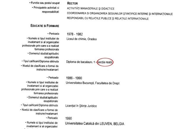 curriculum vitae romana model completat