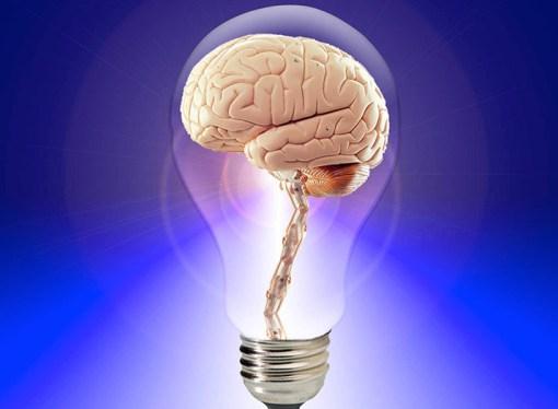 """¿Qué significa ser """"inteligente""""?"""