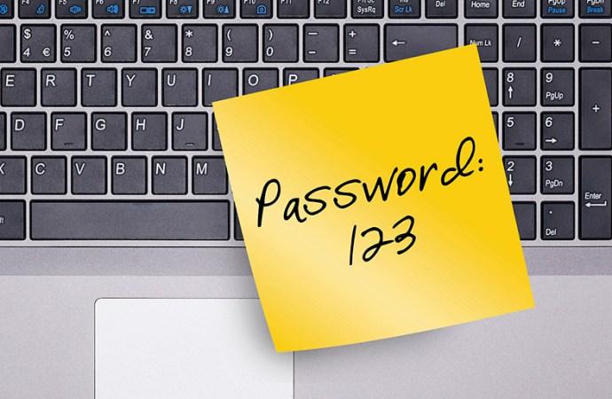 El 30% de los usuarios utiliza 2 o 3 contraseñas para todas sus cuentas