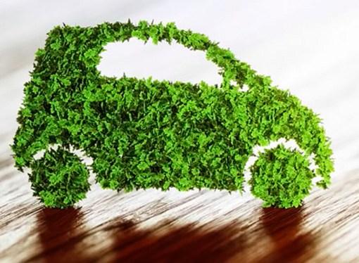Conoce quiénes son los viajeros sostenibles o «green travelers»