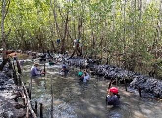 Ricoh continúa su apuesta por la conservación de los ecosistemas mexicanos