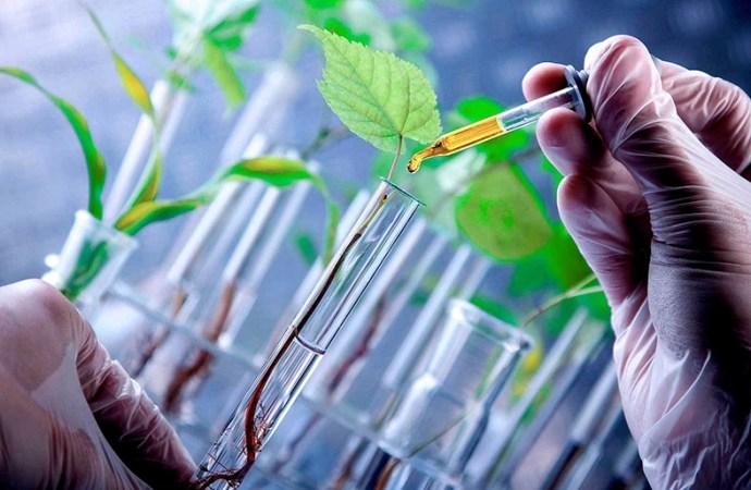 Startup Nostoc Biotechnologies ganó el Global Student Entrepreneur Awards