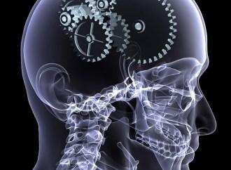 ¿Cómo la colaboración entre mentes y máquinas está volviendo a las industrias más eficientes?