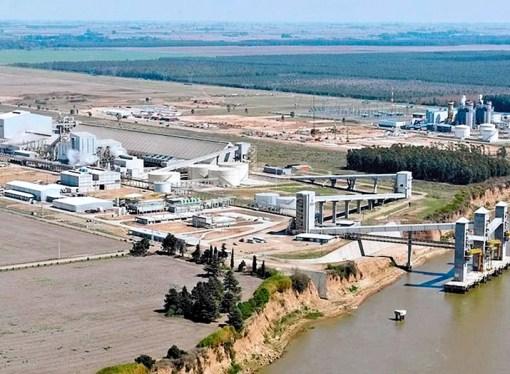 IFC y Rabobank lideran financiamiento para empresa de agroindustria Renova en Argentina