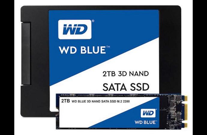 Western Digital entregó las primeras unidades de estado sólido para clientes