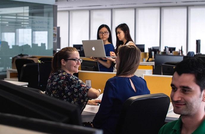 ¿Qué empleo atrae más a los cotizados programadores?