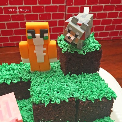 Stampy Minecraft Birthday Cake, My son would LOVE this!