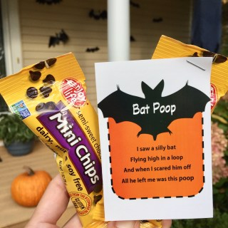 Bat Poop Printable & Giveaway