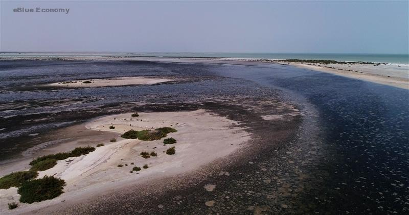 IeBlue_economy_identifying coastal and marine priority areas for conservation in the United Arab Emirates