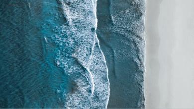 eBlue_economy_مصوّر هاو يلتقط صورة مذهلة لشواطئ _لذهب الأزرق_المتوهجة في نيوزيلندا