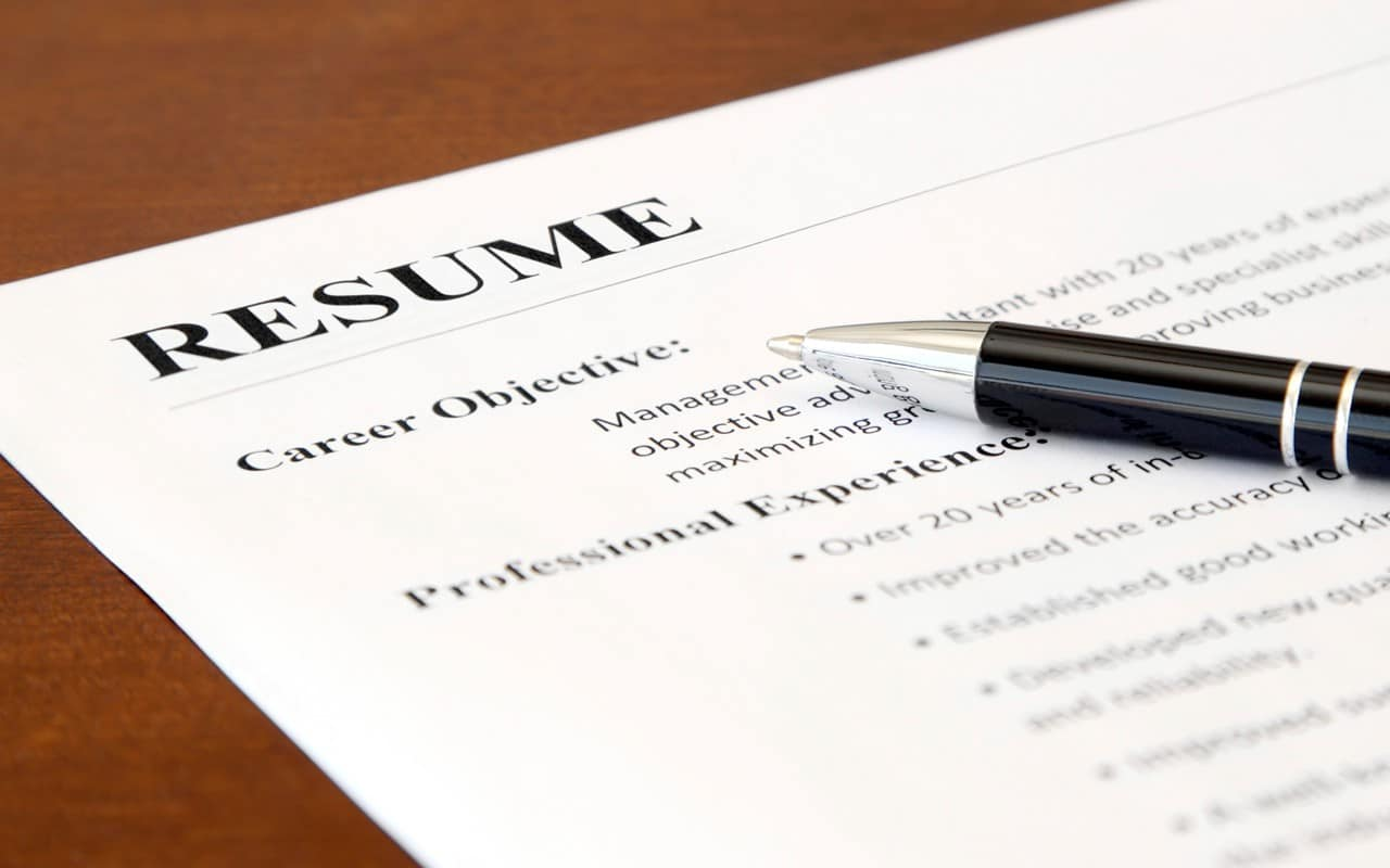 resume objective statement it professional