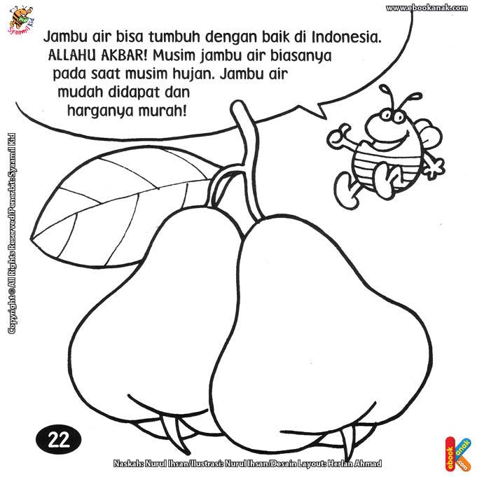 Jambu Air Contoh Gambar Mewarnai Download Gambar Online
