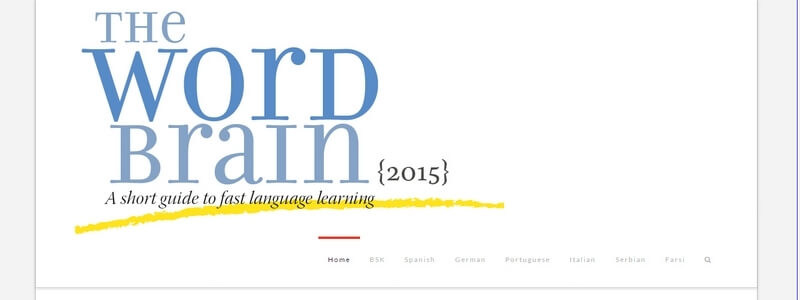 The Word Brain: A Short Guide to Fast Language Learning by Bernd Sebastian Kamps