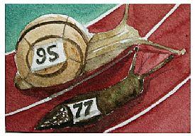 Handicap Race by Joanna Daneman