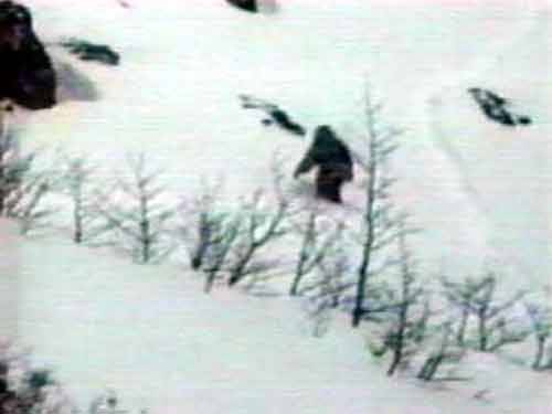 Yeti Is Real:  New Proof That The Abominable Snowman Exists