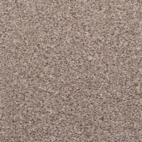 Grey Beige Carpet - Ecarpets save s on Grey Beige Carpet!