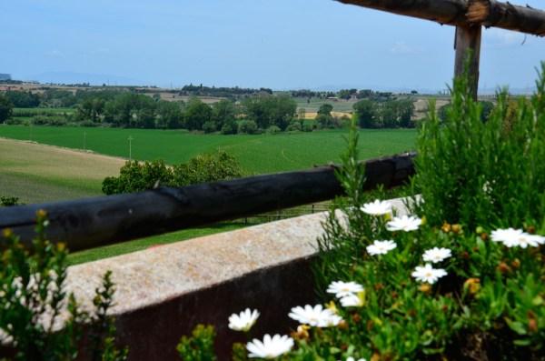 Agriturismo Tenuta Saracone in Montalto di Castro Lazio