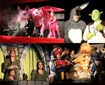 Shrek collage2