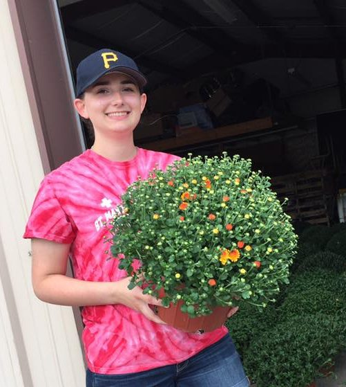 Mums for Sale / Summer Raffle Tickets due Thursday, August 24