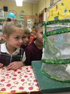 Kindergarten students observe Mother Nature in action