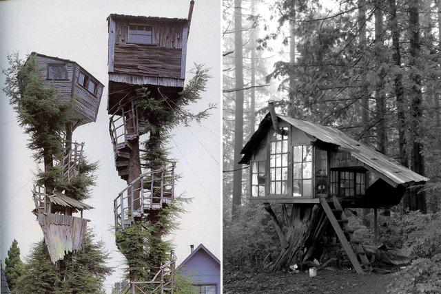 treehouse-3