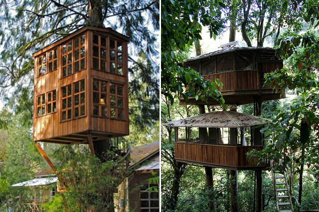 treehouse-6