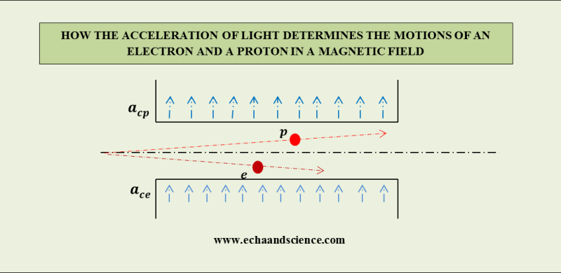 Electron and Proton in a Magnetic Field