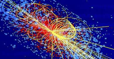 Particle colliders and new particles