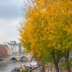 Seine in Paris