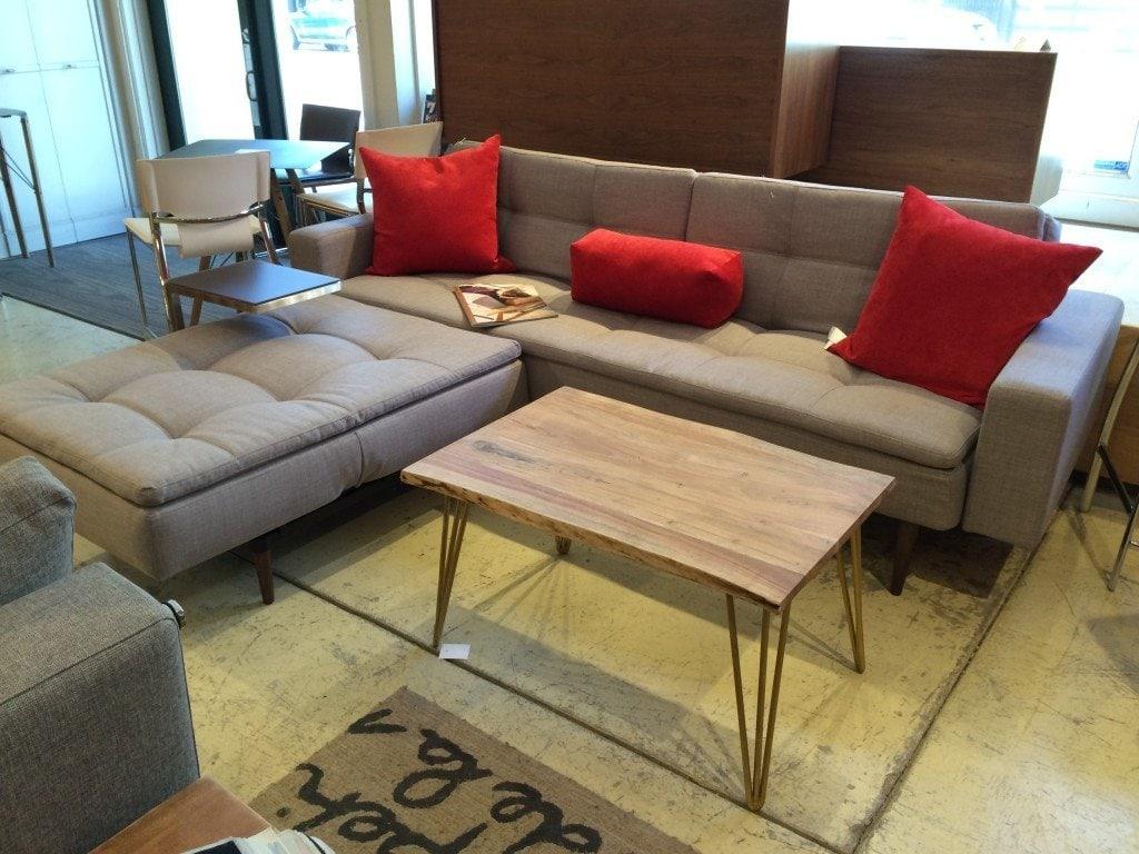 sofa sleeper san francisco concrete echo furniture transitional modern