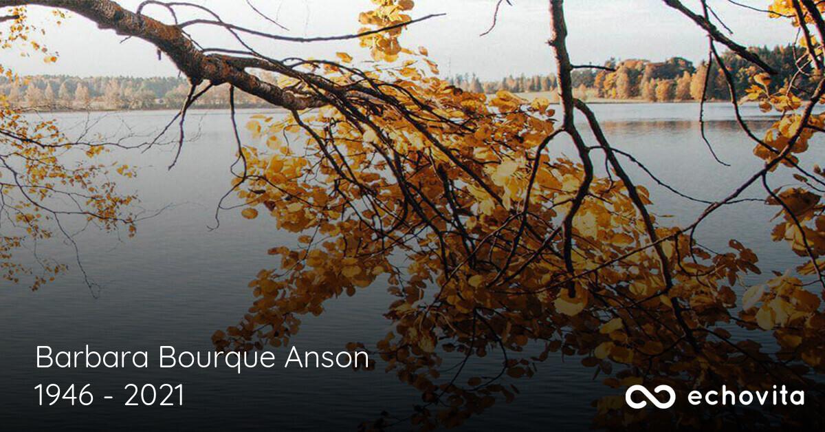 Barbara Bourque Anson Obituary (1946 - 2021)   Lafayette. Louisiana