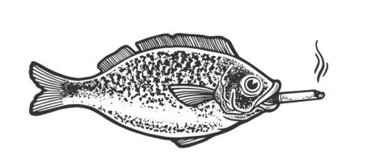 pregnant vaping zebrafish