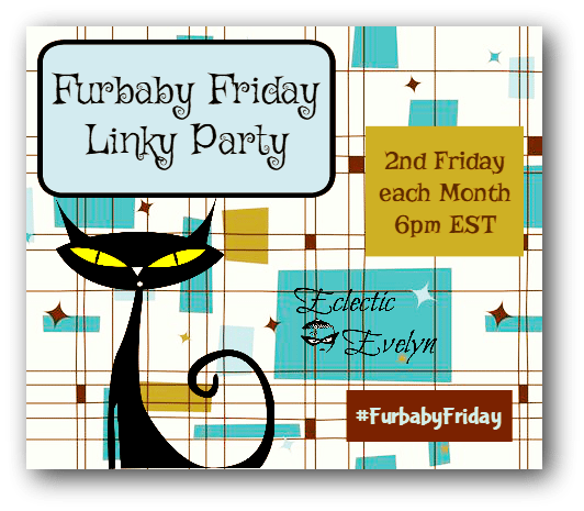 #FurbabyFriday Linky Party EclecticEvelyn.com