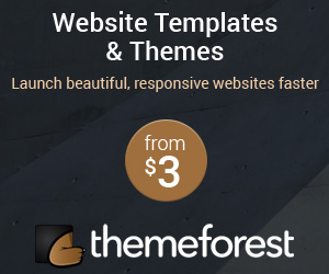 visit themeforest for all your wordpress theme needs