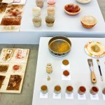 Burnt sienna – A color pigment process with Laura Daza Studio