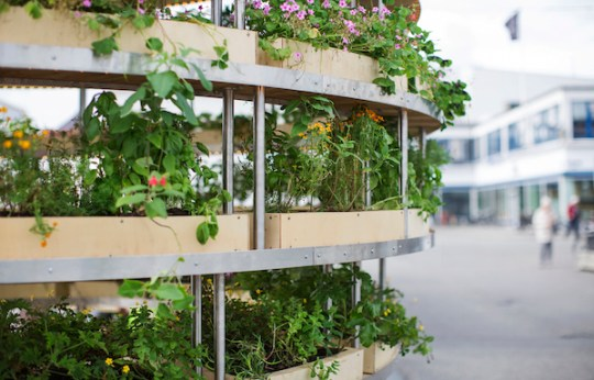 The Growroom, a food producing architecture-Eclectic Trends