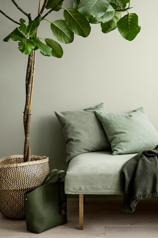 3 Jotun Colors for 2018 - Lush Garden via Eclectic Trends