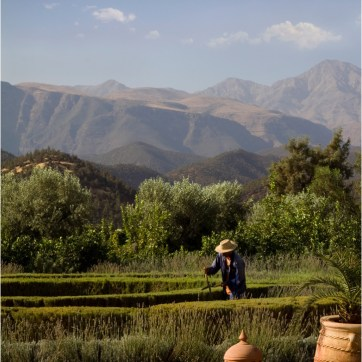 Atlas Mountains, garden worker, clay pots, travel photography, hedge trimming