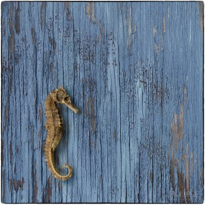 Panel of three, seahorse, blue peeling painted wood, seahorse on blue wood, sea theme, sea themed picture, product photography, still life photography, Creative photography