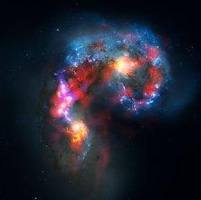 31 ALMA observations of the Antennae Galaxies (119,5 x 120 cm) VERKOCHT