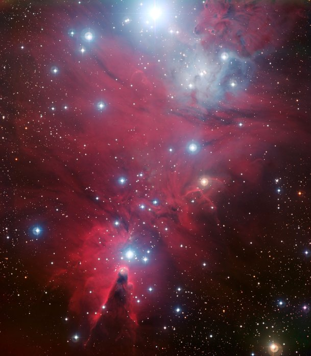 5 NGC 2264 and the Christmas Tree cluster (120 x 104,9 cm) VERKOCHT