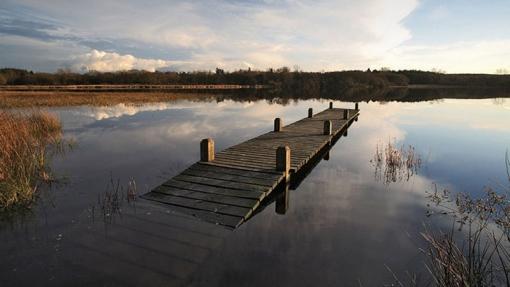 À Plounérin, un nouvel espace naturel classé à découvrir