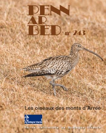 Morlaix (29), Oiseaux des monts d'Arrée à la librairie Dialogues