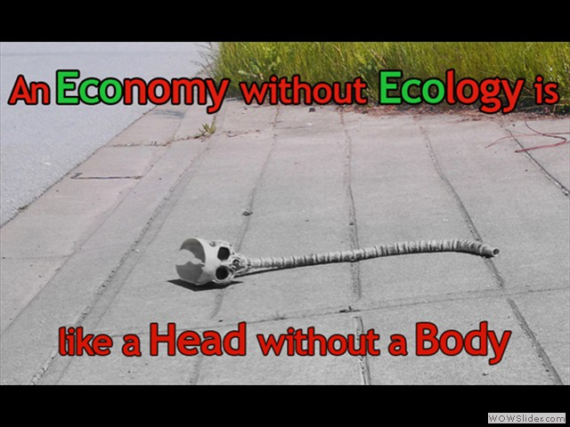 without Ecology